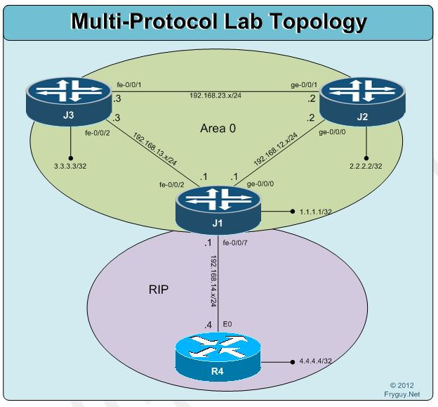 Junos Multi Protocol Lab Ospf And Rip Fryguy S Blog